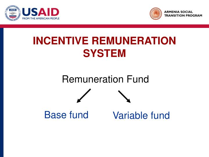 INCENTIVE REMUNERATION SYSTEM