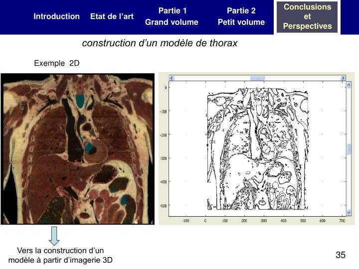 construction d'un modèle de thorax