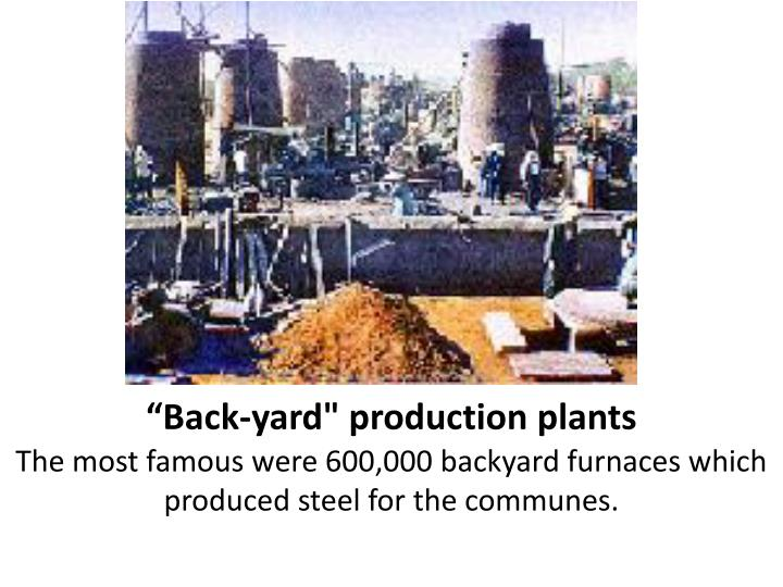 """Back-yard"" production plants"