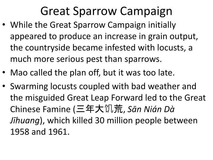 Great Sparrow Campaign