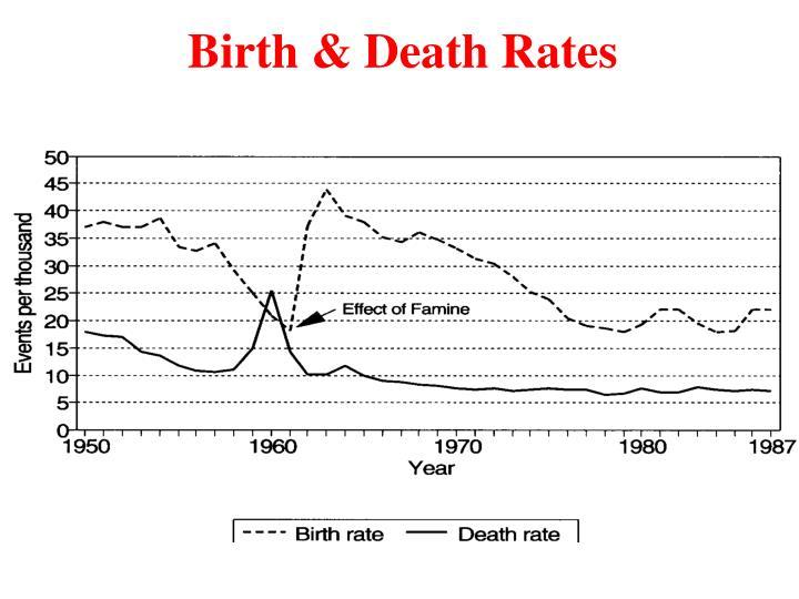 Birth & Death Rates