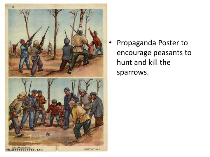 Propaganda Poster to encourage peasants to hunt and kill the sparrows.