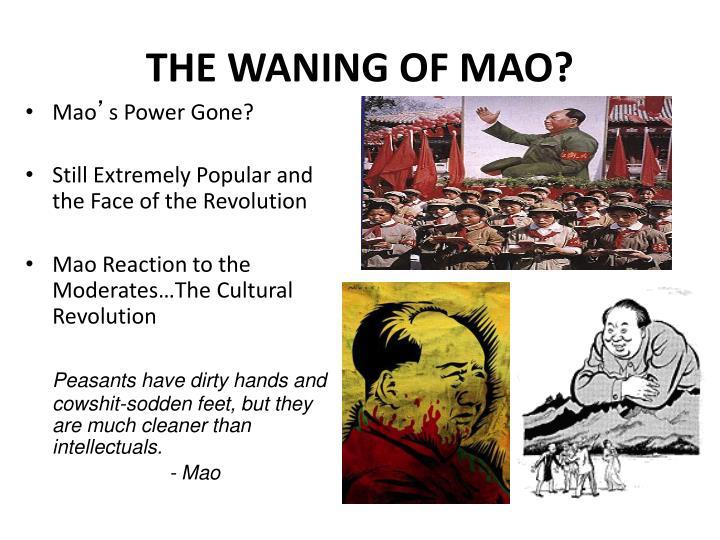 THE WANING OF MAO?