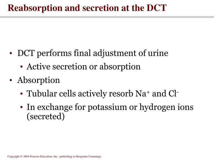 Reabsorption and secretion at the DCT