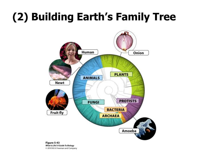 (2) Building Earth's Family Tree