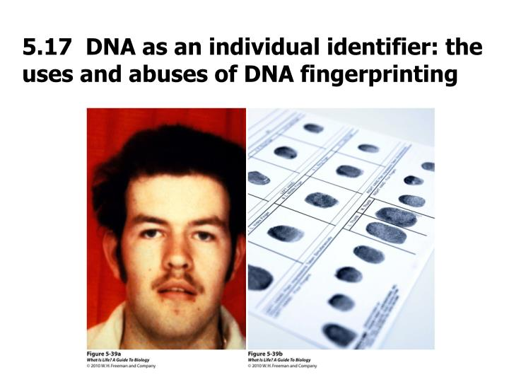 5.17  DNA as an individual identifier: the uses and abuses of DNA fingerprinting