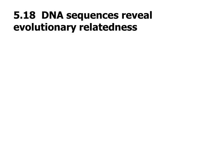 5.18  DNA sequences reveal evolutionary relatedness