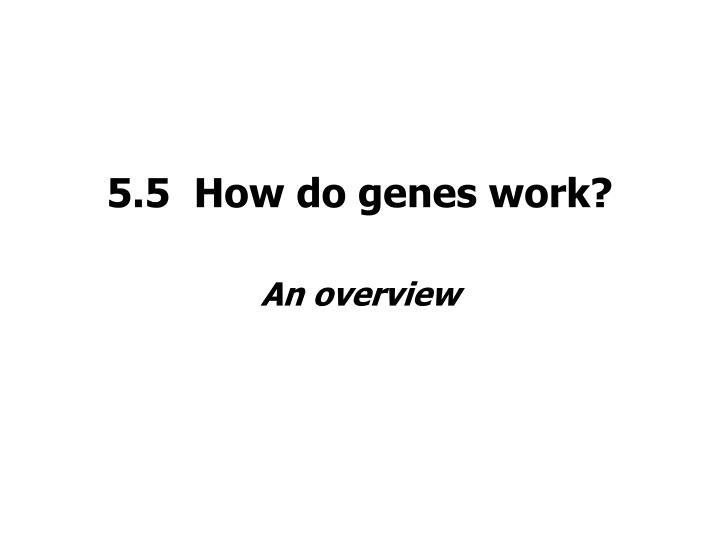5.5  How do genes work?