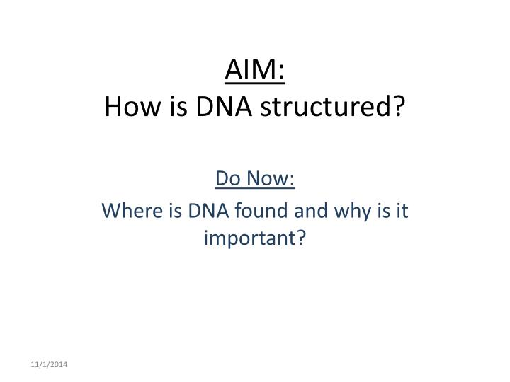 Aim how is dna structured