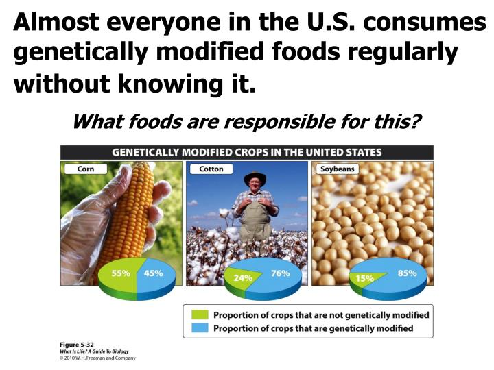 Almost everyone in the U.S. consumes genetically modified foods regularly without knowing it.