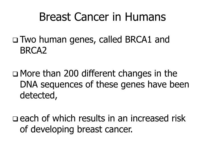 Breast Cancer in Humans