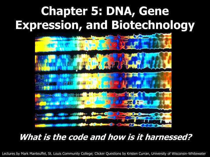 Chapter 5 dna gene expression and biotechnology