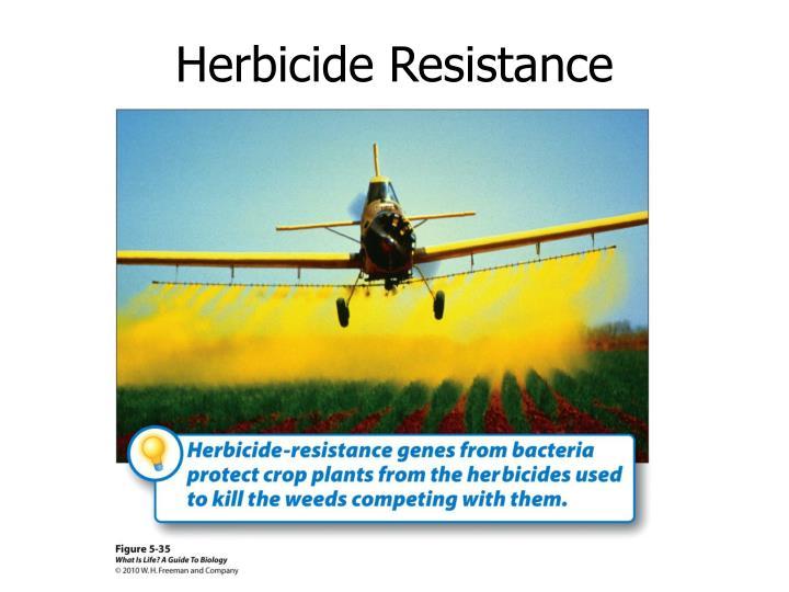 Herbicide Resistance