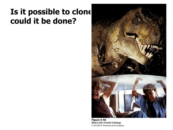 Is it possible to clone a dinosaur? How could it be done?