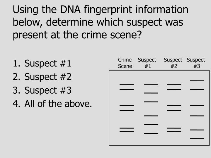 Using the DNA fingerprint information below, determine which suspect was present at the crime scene?