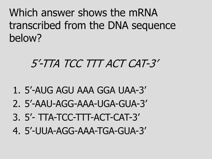 Which answer shows the mRNA transcribed from the DNA sequence below?