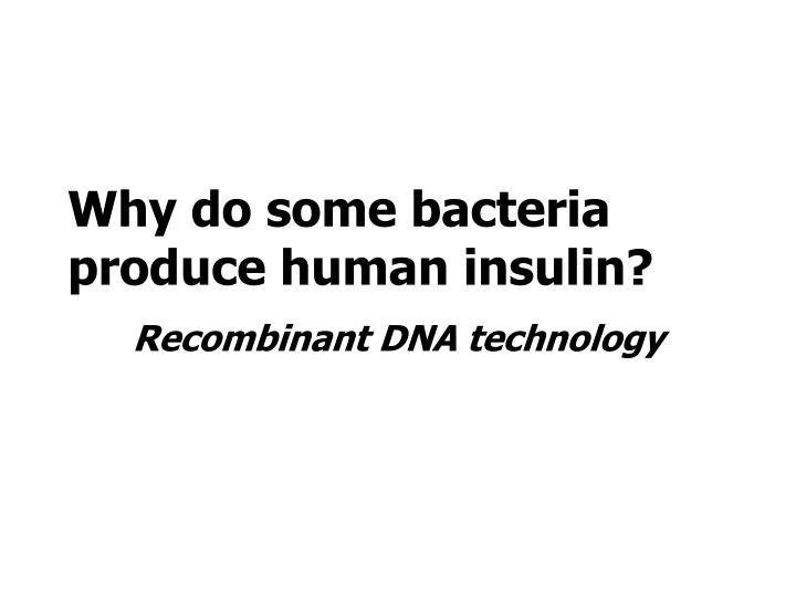 Why do some bacteria produce human insulin?
