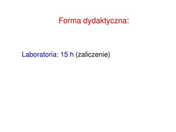 Forma dydaktyczna: