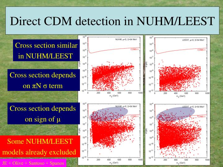 Direct CDM detection in NUHM/LEEST