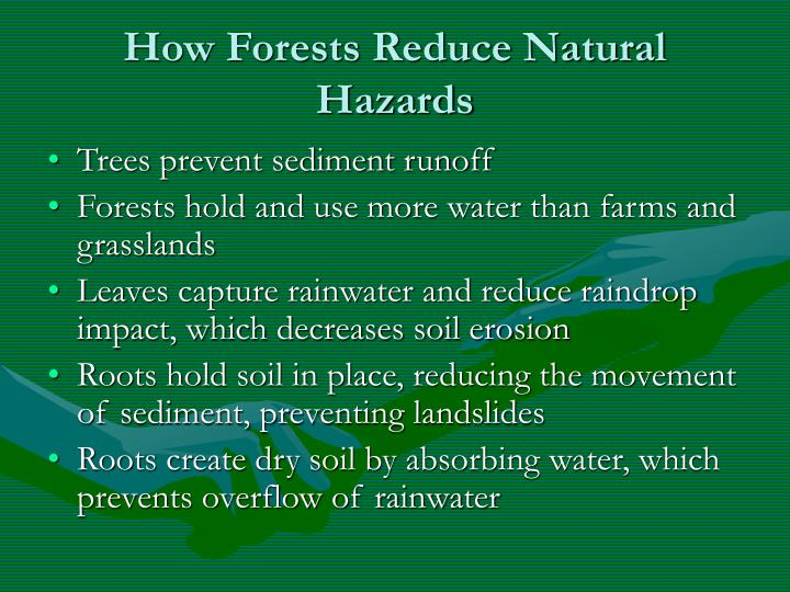 How Forests Reduce Natural Hazards