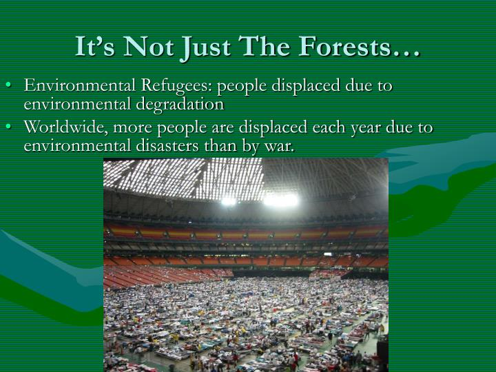 It's Not Just The Forests…