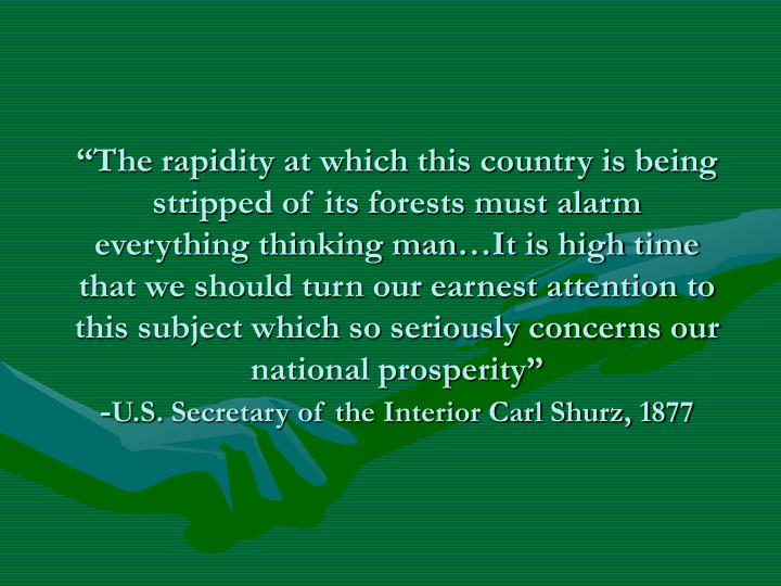 """The rapidity at which this country is being stripped of its forests must alarm everything thinking man…It is high time that we should turn our earnest attention to this subject which so seriously concerns our national prosperity"""