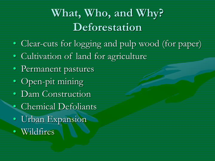 What who and why deforestation
