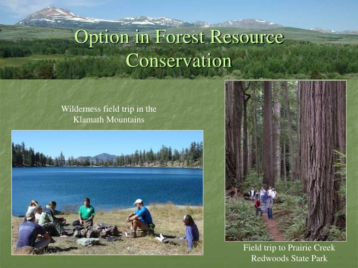 Option in Forest Resource Conservation