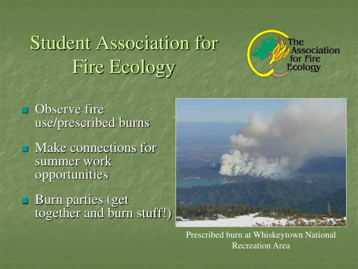Student Association for Fire Ecology