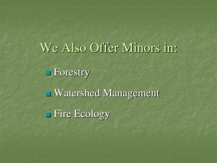 We Also Offer Minors in: