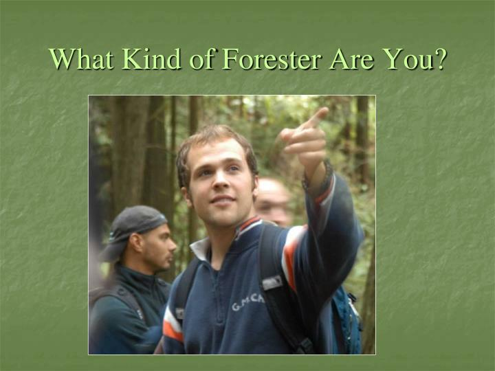 What Kind of Forester Are You?