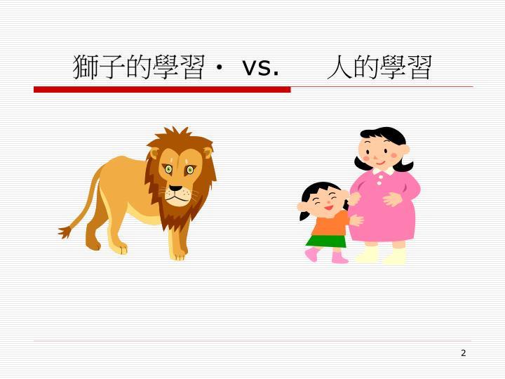 獅子的學習
