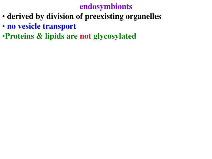 endosymbionts