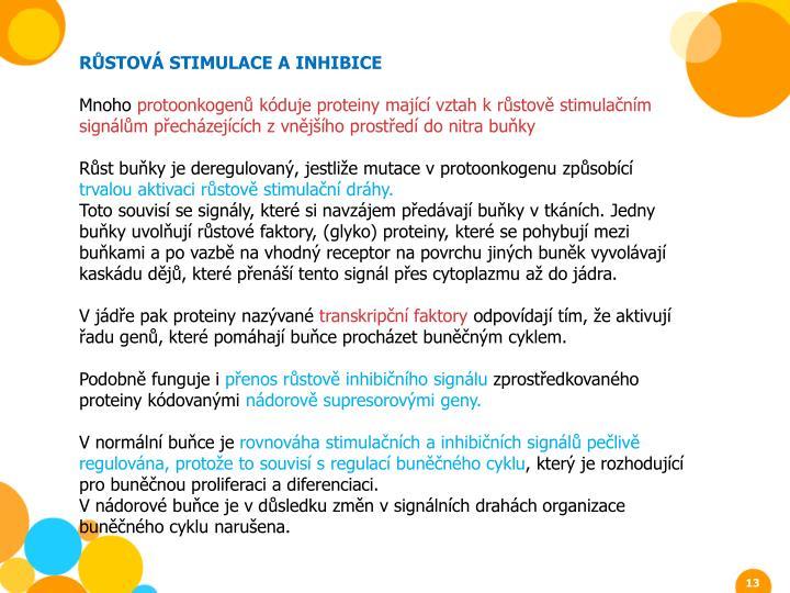 RŮSTOVÁ STIMULACE A INHIBICE