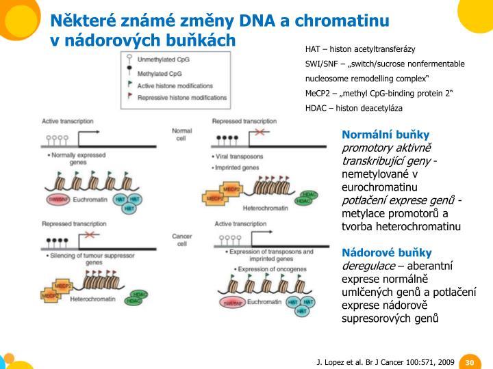 Některé známé změny DNA a chromatinu