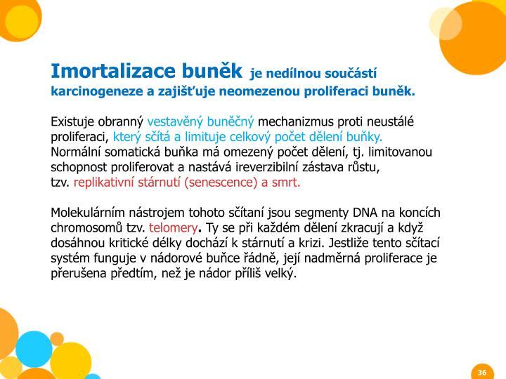 Imortalizace buněk