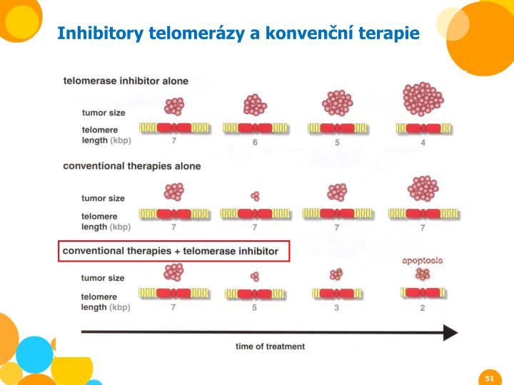 Inhibitory telomerázy a konvenční terapie