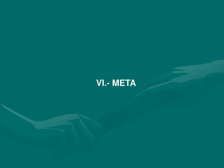 VI.- META