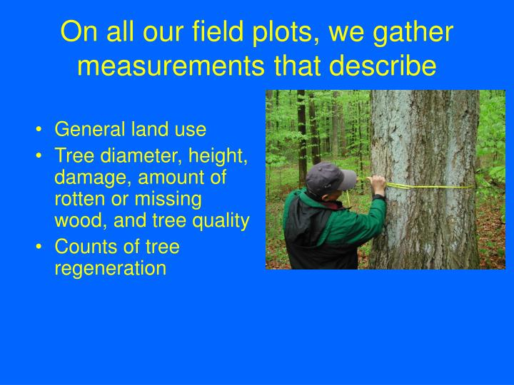On all our field plots, we gather measurements that describe
