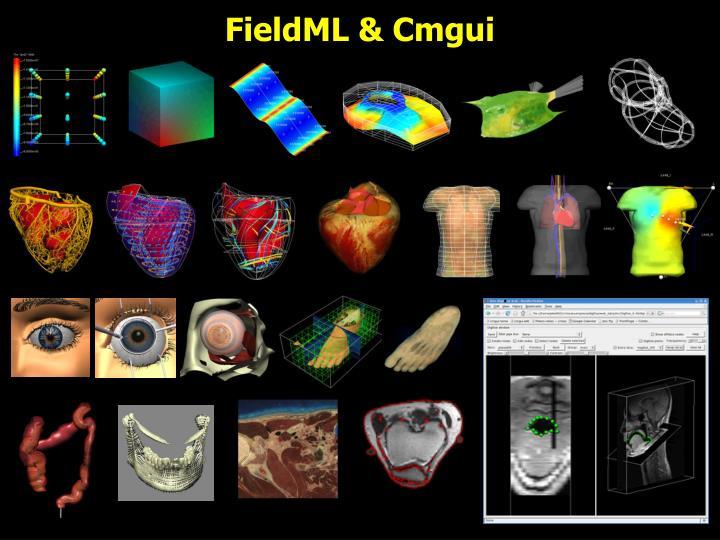 FieldML & Cmgui
