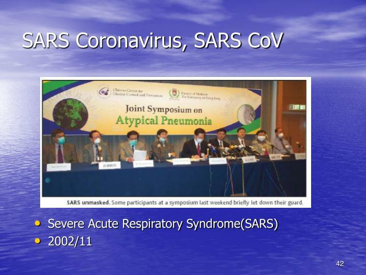 SARS Coronavirus, SARS CoV