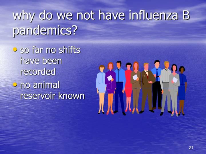 why do we not have influenza B pandemics?