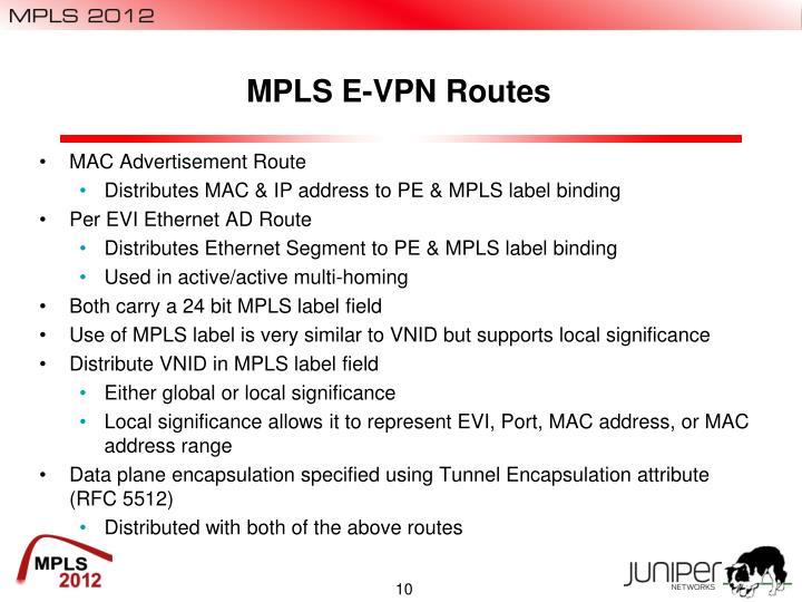 MPLS E-VPN Routes