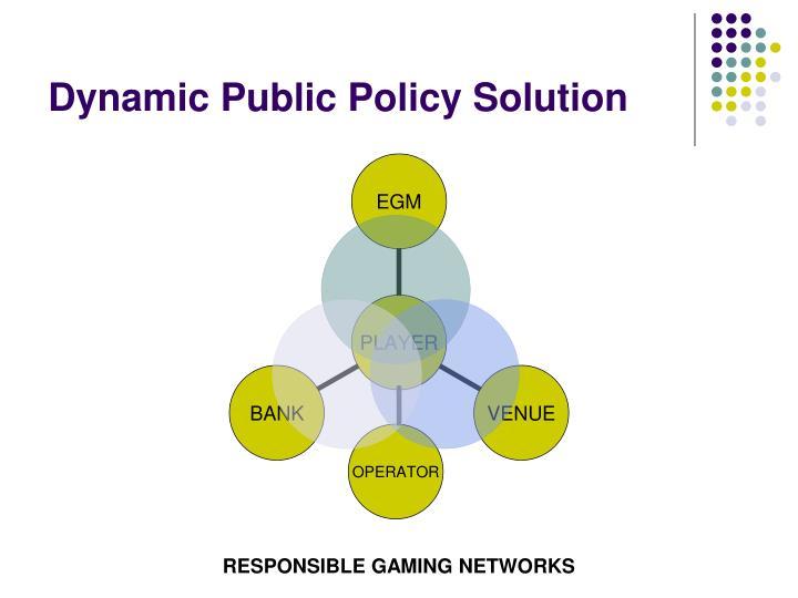 Dynamic Public Policy Solution