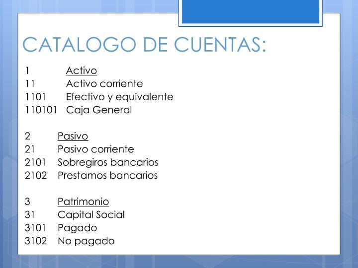 CATALOGO DE CUENTAS: