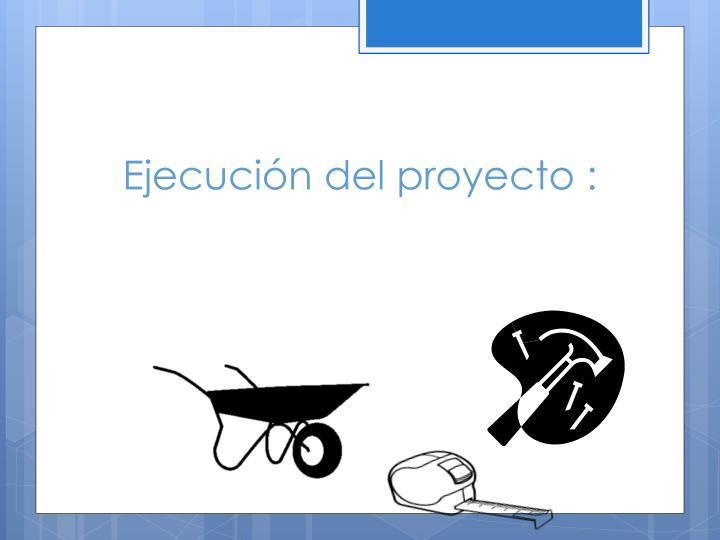 Ejecución del proyecto :