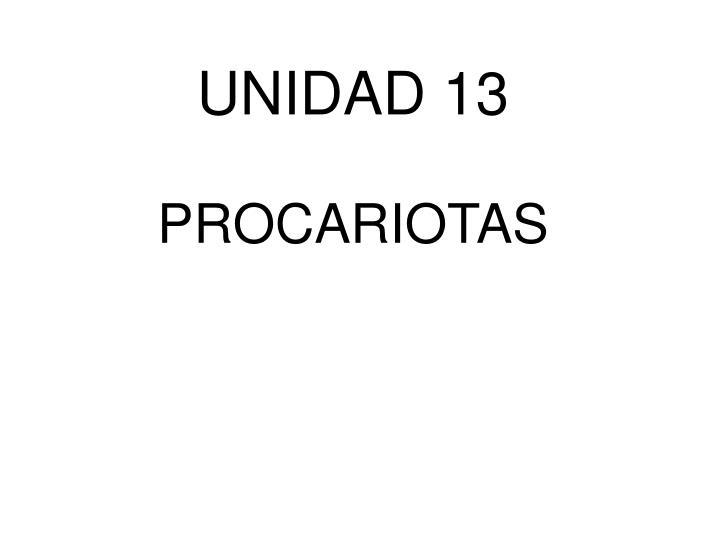 UNIDAD 13