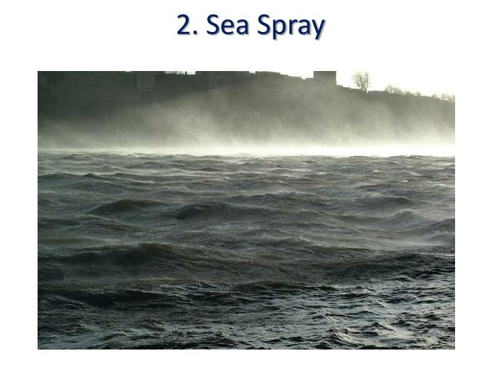 2. Sea Spray