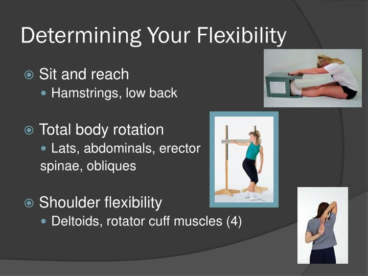Determining Your Flexibility