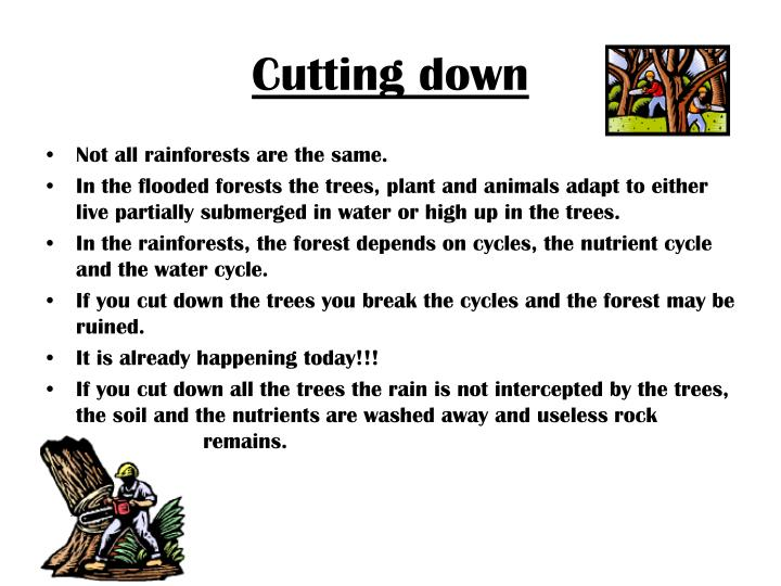Cutting down